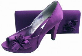 Rosebud Aubergine Purple Evening Shoes