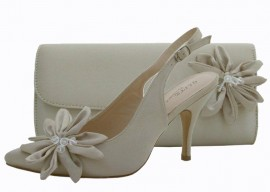 Rosa Champagne Evening Shoes