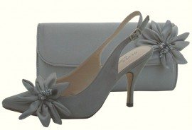 Rosa Pewter Evening Shoes