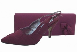 Selina Burgundy Evening Shoes