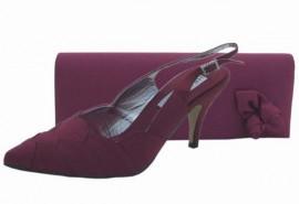 Selina Burgundy Evening Shoes